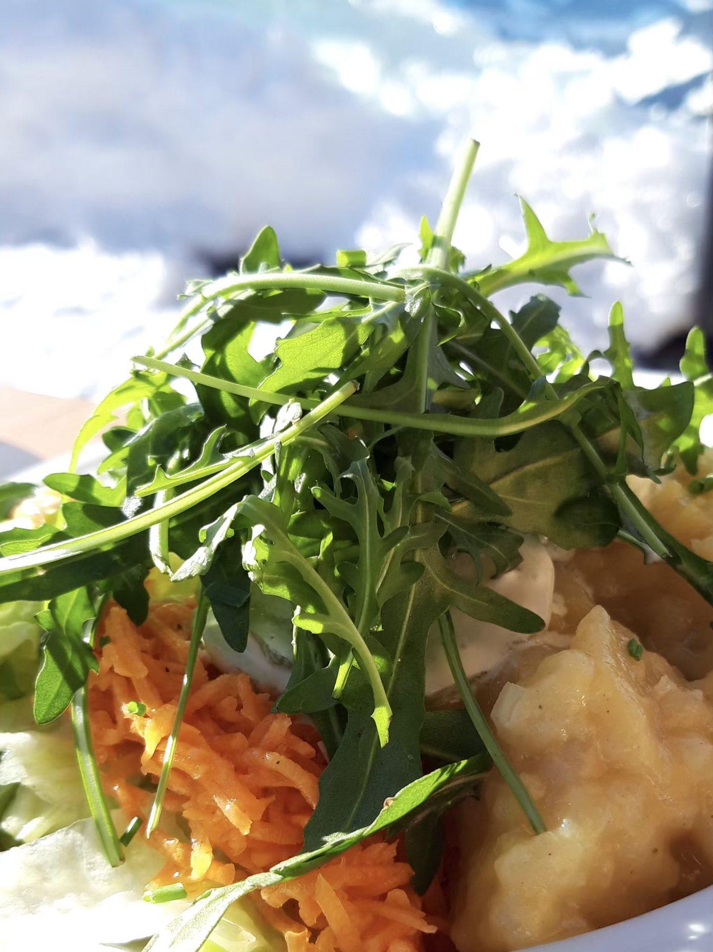 Neulich am Salatäquator